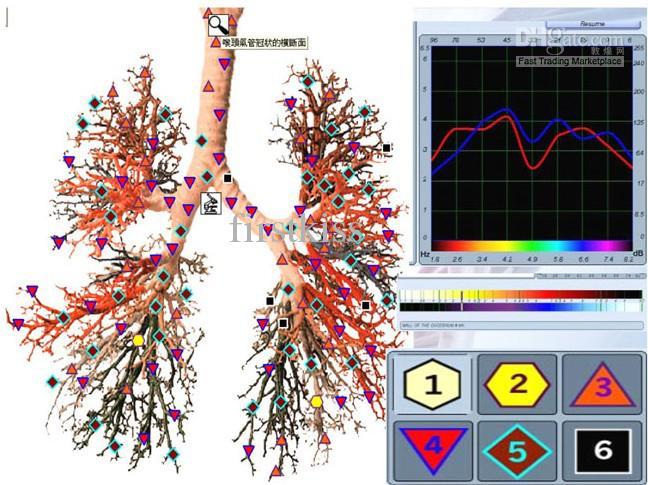 analizador cuantico 3d nls